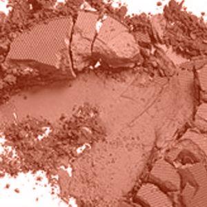 Orange Blush: Coppertone (Matte) MAC Powder Blush