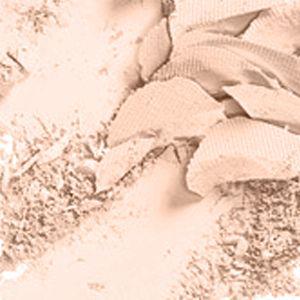 Pressed Powder: Nw10 MAC Studio Fix Powder Plus Foundation