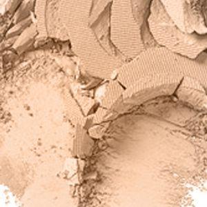 Pressed Powder: Nw22 MAC Studio Fix Powder Plus Foundation