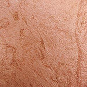 Pressed Powder: Cheeky     Bronze MAC Mineralize Skinfinish