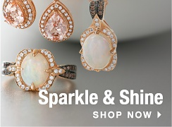 Sparkle and Shine. Shop Now.