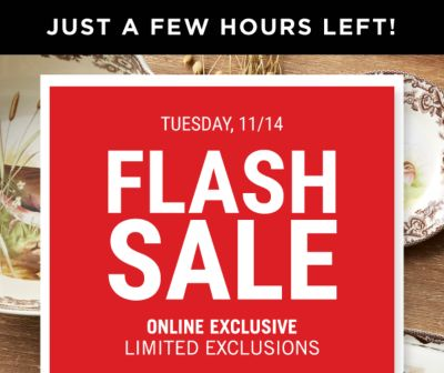 JUST A FEW HOURS LEFT! Tuesday, 11/14 | Flash Sale - Online Exclusive - Limited Exclusions | $30 off $100 regular and sale purchase {Coupon Code: 1965862}. $50 off $150 regular and sale purchase {Coupon Code: 21814067}. Get Coupon.