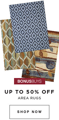 BONUSBUYS | UP TO 50% OFF AREA RUGS | SHOP NOW