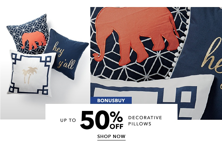 BonusBuys Up To 50 Percent Off Decorative Pillows | shop now