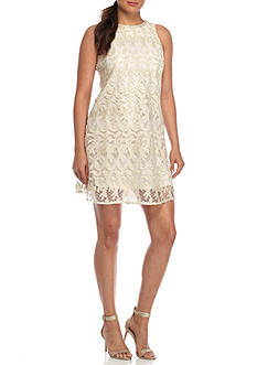 Taylor Embroidered Mesh Shift Dress