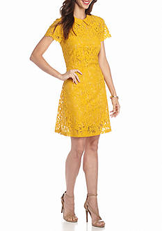 ALLEN B. BY ALLEN SCHWARTZ® Peter Pan Collar Lace Dress