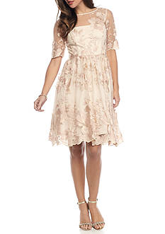 Adrianna Papell Embroidered Mesh Fit and Flare Dress