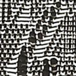 Black Blouse: Black Kim Rogers Crochet Scoop Neck Shirt