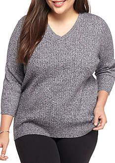 Kim Rogers Plus Size V Neck Sweater