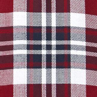 Trendy Plus Size Clothing: Plaids: Raspberry Jane Ashley Plus Size Plaid Lace Woven Top
