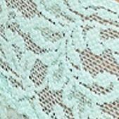 Womens Lingerie: Pistachio Hanky Panky Signature Lace Original Rise Thong - 4811