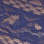 Luxury Lingerie: Coastal Calvin Klein Bare Lace Hipster - QD3552