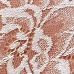 Women's Bikini Underwear: Rosewood Lunaire Limoges Mesh and Lace Back Bikini - 29732