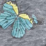 Juniors: Sleepwear Sale: Alter Ego Butterflies Honeydew Intimates Undrest Sweatshirt - 367549