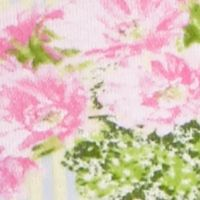 Honeydew Intimates Women Sale: Cactus Stripe Honeydew Intimates Riki Cotton Girl Shorts - 590331