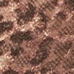 Modern Bras: Brown Combo Free People Wild One Undie