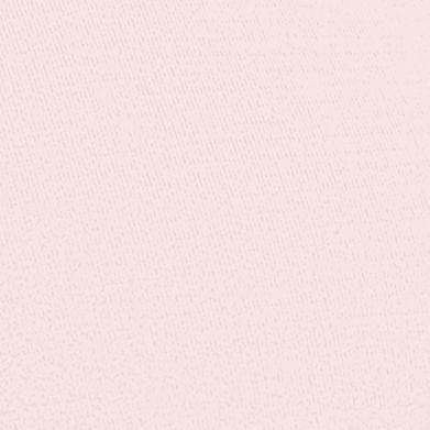 Purple Plus Size Panties: Rosewood Bali Microfiber Brief