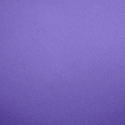 Wacoal: Purple Opulence/Yell Wacoal Sport Underwire Bra - 855170