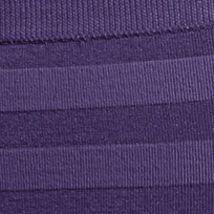 Purple Plus Size Panties: Plum Pudding Jockey Matte & Shine Hi-Cut Brief - 1306