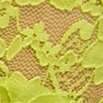 Women: Thong Sale: Ondina Lime New Directions Intimates V-Lace Thong - 16J113