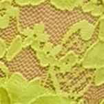 New Directions Intimates Women Sale: Ondina Lime New Directions Intimates V-Lace Thong - 16J113