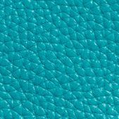 Handbags & Accessories: Coach Handbags & Wallets: Dk/Turquoise COACH SWAGGER 27 IN PEBBLE LEATHER