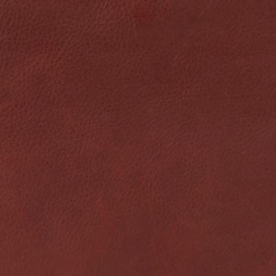 Handbags & Accessories: Hobo Designer Handbags: Brandy Hobo Porter Tote