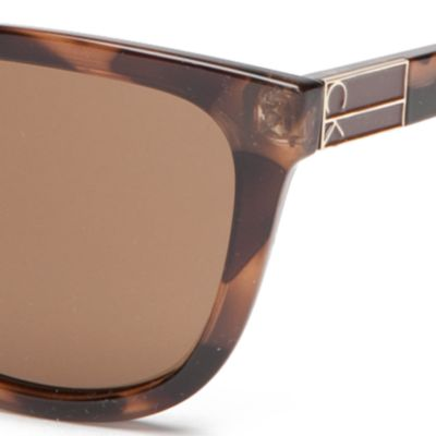 Fashion Sunglasses: Soft Tortoise Calvin Klein Rounded Rectangle With Metal Logo Sunglasses