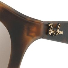 Mens Sunglasses: Havana Ray-Ban Gatsby Sunglasses