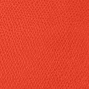 Discount Designer Handbags: Geranium Dooney & Bourke Claremont Hobo Bag