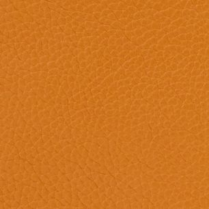 Designer Handbags: Caramel Dooney & Bourke Pebble Small Lexington shopper