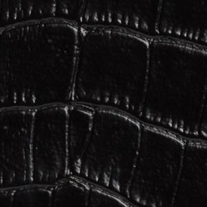 Handbags & Accessories: Mundi Handbags & Wallets: Black Mundi Big Fat Croc Wallet