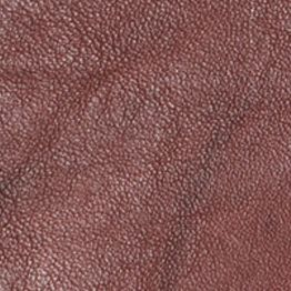 Handbags & Accessories: Frye Designer Handbags: Walnut Frye Campus Large Wallet