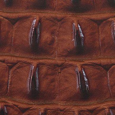 Handbags and Wallets: Pecan Brahmin Melbourne Collection Soft Checkbook Wallet