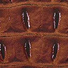 Designer Satchels: Pecan Brahmin Melbourne Collection Duxbury Satchel