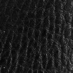 Online Exclusives: Boots: Black Dr. Scholl's Casey Bootie