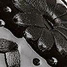 Shoes: Jack Rogers Women's: Black      Patent Jack Rogers Devyn Wedge Sandal