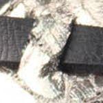 Shoes: Blowfish Women's: Black Pisa Blowfish Badot Sandal