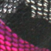 Online Exclusives: Pumps: Fuchsia C. Label Liberty Dress Pump