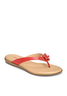 AEROSOLES Branchlet Sandal