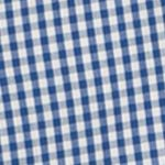 Young Men: Check & Plaid Sale: True Blue IZOD Advantage Stretch Gingham-Checked Shirt