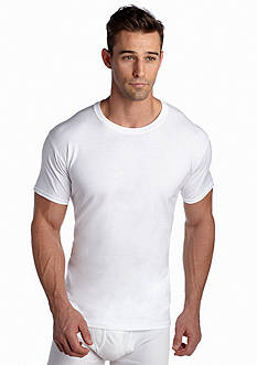 Hanes Set of 4 Platinum X-Temp™ Crew Neck Tees