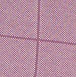Van Heusen: Purple Hortensia Van Heusen Big & Tall Short Sleeve Jacquard Windowpane Knit Polo Shirt