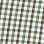 Men: Saddlebred Casual Shirts: Green Saddlebred 1888 Long Sleeve Mini Gingham Non-Iron Shirt