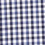 St Patricks Day Outfits For Men: Blue Saddlebred 1888 Long Sleeve Mini Gingham Non-Iron Shirt