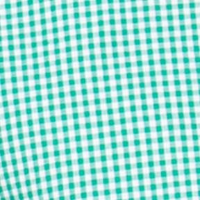 Southern Style: Shirts: Astro Green Chaps Gingham Poplin Shirt