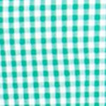 St Patricks Day Outfits For Men: Astro Green Chaps Gingham Stretch-Poplin Shirt