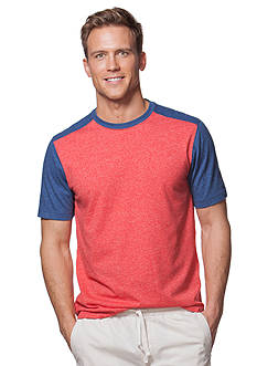 Chaps Big & Tall Color-Blocked Jersey T-Shirt