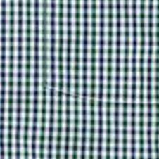 Southern Proper: Green Southern Proper Plaid Goaline Shirt