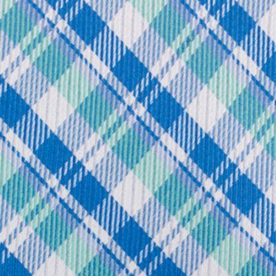 Young Men: Nautica Accessories: Mint Nautica Stockton Plaid Tie